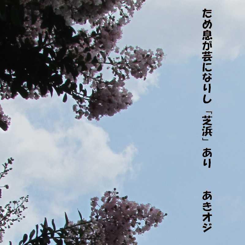 f0117041_06473221.jpg