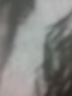 b0136144_15555220.jpg