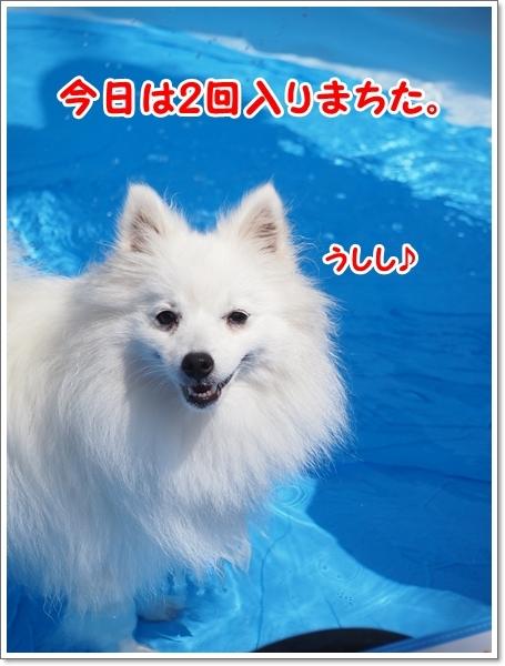 d0013149_22511892.jpg