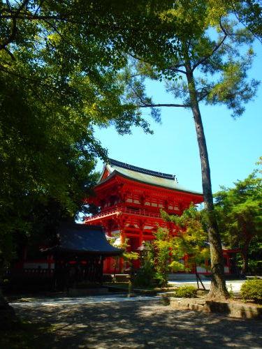 灼熱の京都ライド_a0345079_18453176.jpg