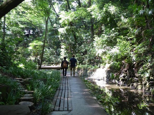 都心とは思えないような緑と横穴古墳や滝、お不動様、甘味茶屋を楽しめる渓谷があるよ♪ 等々力渓谷はアクセスもいい!_b0287088_09121145.jpg