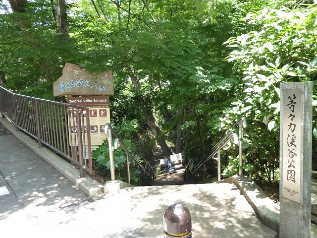 都心とは思えないような緑と横穴古墳や滝、お不動様、甘味茶屋を楽しめる渓谷があるよ♪ 等々力渓谷はアクセスもいい!_b0287088_09132197.jpg