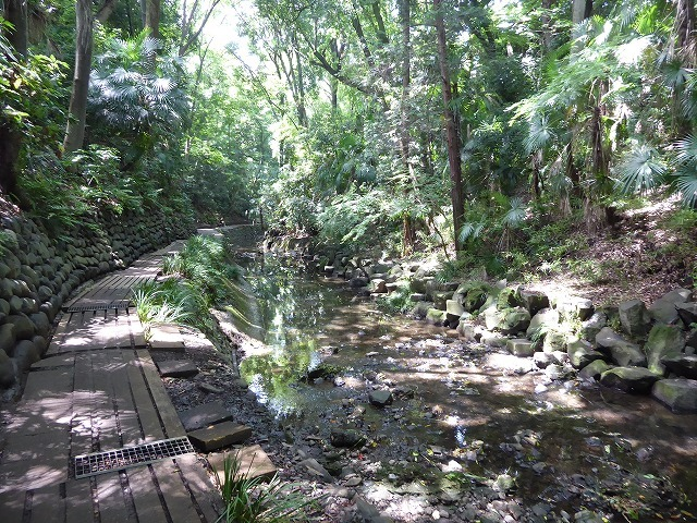 都心とは思えないような緑と横穴古墳や滝、お不動様、甘味茶屋を楽しめる渓谷があるよ♪ 等々力渓谷はアクセスもいい!_b0287088_09140819.jpg