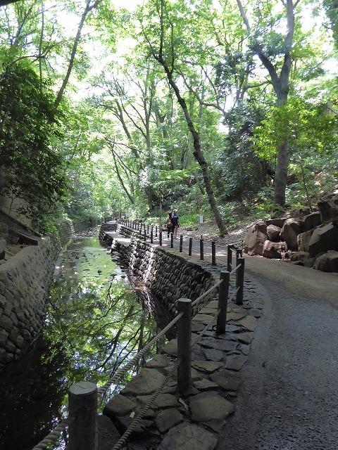都心とは思えないような緑と横穴古墳や滝、お不動様、甘味茶屋を楽しめる渓谷があるよ♪ 等々力渓谷はアクセスもいい!_b0287088_09152909.jpg
