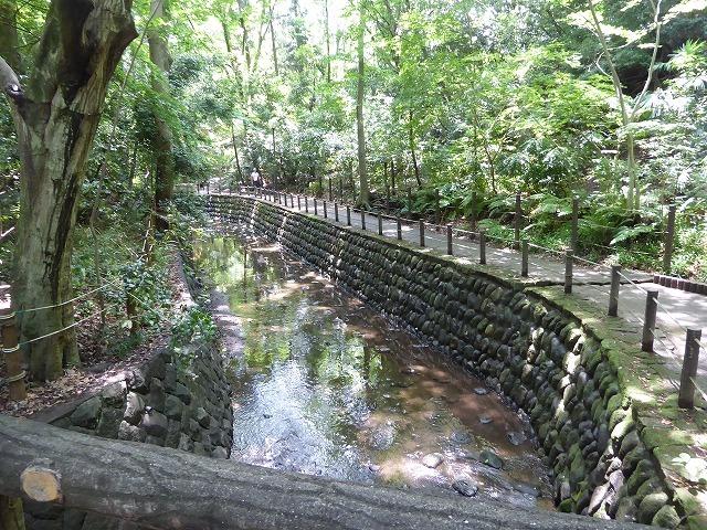 都心とは思えないような緑と横穴古墳や滝、お不動様、甘味茶屋を楽しめる渓谷があるよ♪ 等々力渓谷はアクセスもいい!_b0287088_09170999.jpg