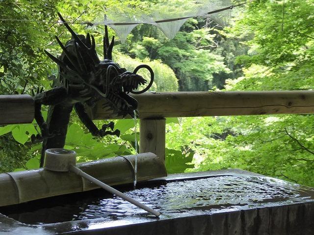 都心とは思えないような緑と横穴古墳や滝、お不動様、甘味茶屋を楽しめる渓谷があるよ♪ 等々力渓谷はアクセスもいい!_b0287088_09235912.jpg
