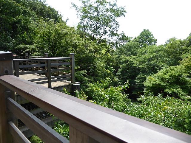 都心とは思えないような緑と横穴古墳や滝、お不動様、甘味茶屋を楽しめる渓谷があるよ♪ 等々力渓谷はアクセスもいい!_b0287088_09254796.jpg
