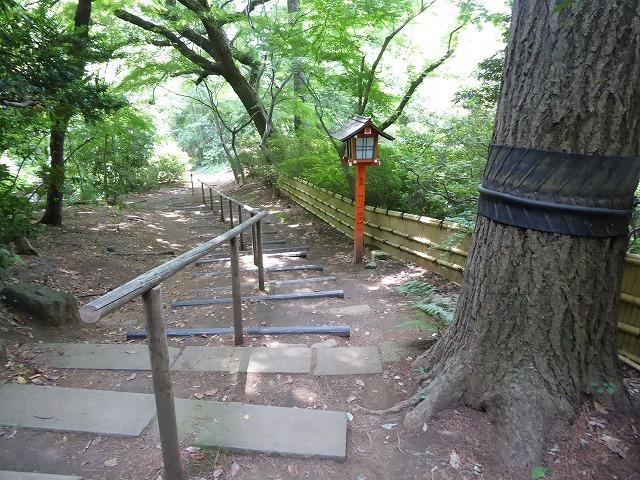 都心とは思えないような緑と横穴古墳や滝、お不動様、甘味茶屋を楽しめる渓谷があるよ♪ 等々力渓谷はアクセスもいい!_b0287088_09263800.jpg