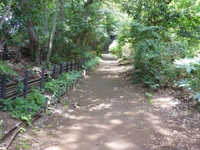 都心とは思えないような緑と横穴古墳や滝、お不動様、甘味茶屋を楽しめる渓谷があるよ♪ 等々力渓谷はアクセスもいい!_b0287088_09285243.jpg