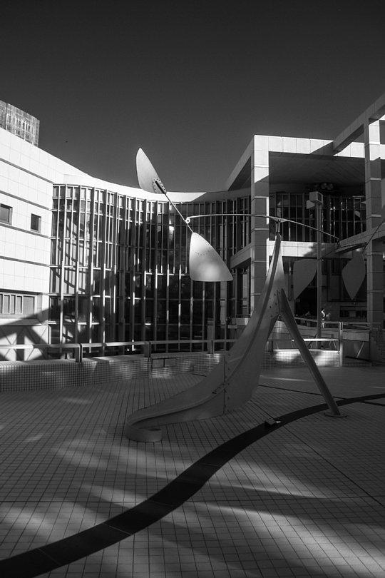 An Art Museum In Late Afternoon Light_d0353489_17541729.jpg