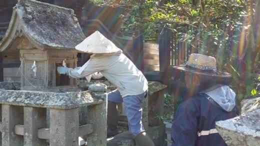ご宿泊滞在記~日本ミツバチの蜂蜜採り_f0208315_09221909.jpg