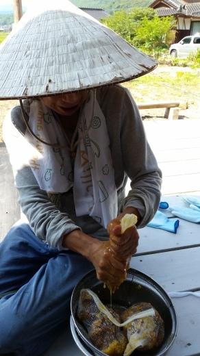 ご宿泊滞在記~日本ミツバチの蜂蜜採り_f0208315_09245609.jpg