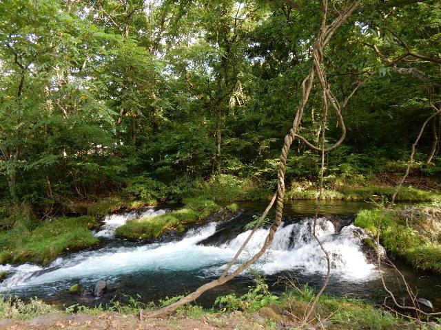中山湖・鐘山の瀧とその渓流  「凉し」写真集_b0221219_17324898.jpg