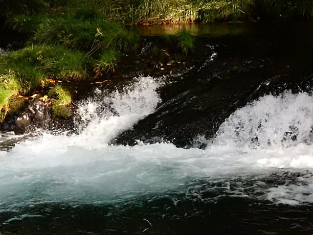 中山湖・鐘山の瀧とその渓流  「凉し」写真集_b0221219_17410944.jpg
