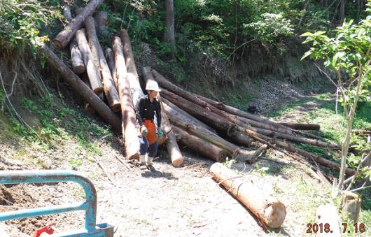 メルマガ:薪林業 (774号)_a0051539_18190451.png