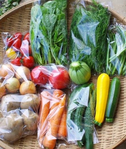 今週の野菜セット(7/17~7/21着)_c0110869_11314625.jpg