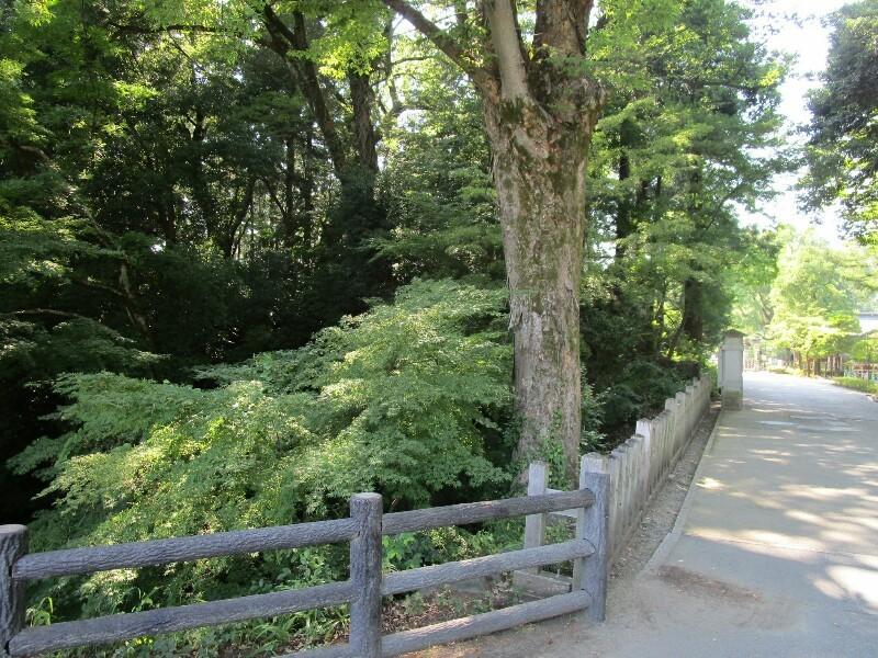 85日目【多摩−甲府】甲州街道は暑かった_e0201281_17433480.jpg