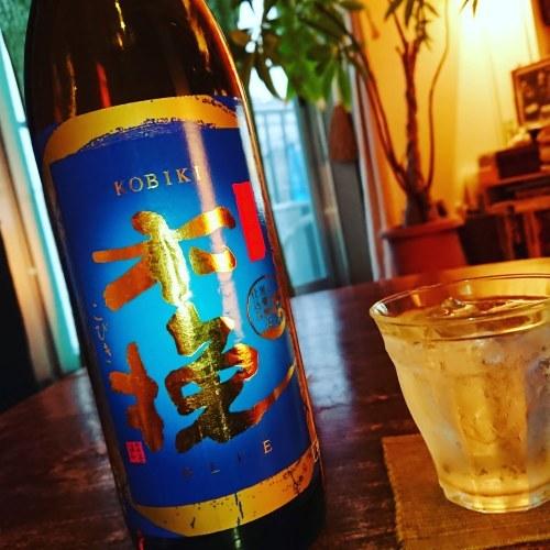 あるいは酒でいっぱいの海_c0202101_09511038.jpeg