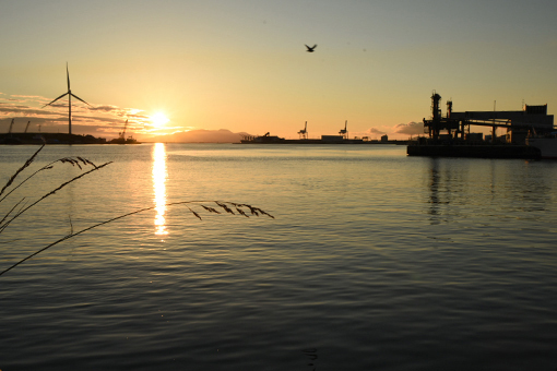 夕陽の港湾_b0259218_02511558.jpg
