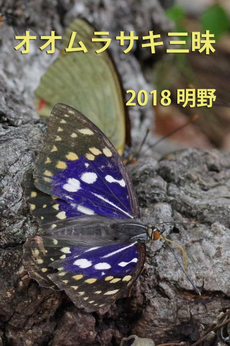 b0144049_10525994.jpg