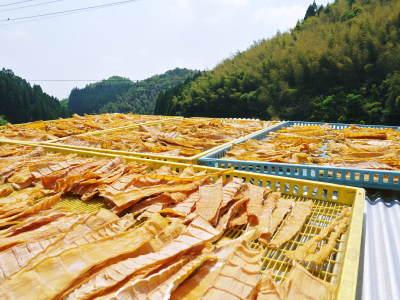 無農薬栽培の熊本産たけのこで作った『干したけのこ』平成30年度商品は残りわずか!早い者勝ちです!_a0254656_18462515.jpg