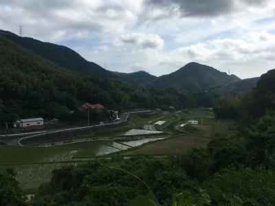 初めての足立山~風師山トレラン_f0220089_12371070.jpg