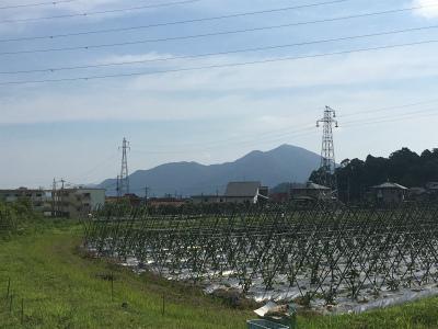 初めての足立山~風師山トレラン_f0220089_12371394.jpg