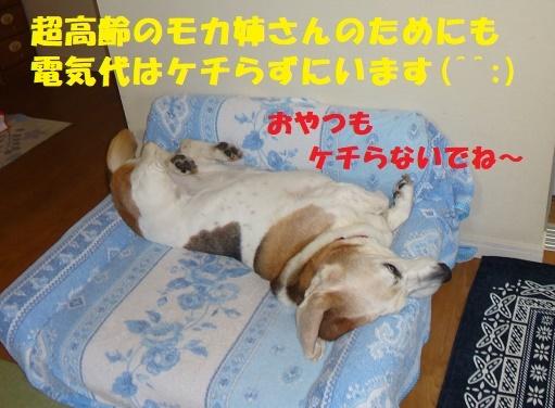 f0121712_15593599.jpg