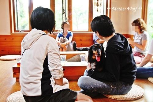 マザーウルフ ゲストハウス・パーティー@伊豆高原 レポート♪_e0191026_15281080.jpg