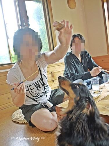 マザーウルフ ゲストハウス・パーティー@伊豆高原 レポート♪_e0191026_16284295.jpg