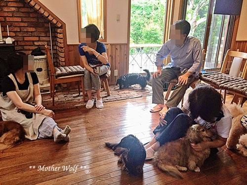 マザーウルフ ゲストハウス・パーティー@伊豆高原 レポート♪_e0191026_20160423.jpg