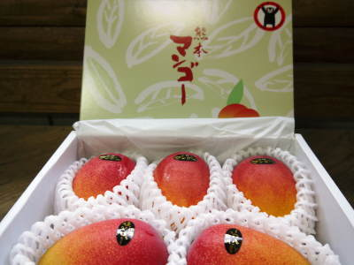樹上完熟アップルマンゴー やっと完熟しネットに落ち始めました!7月18日(金)~順次出荷していきます!!_a0254656_19142614.jpg
