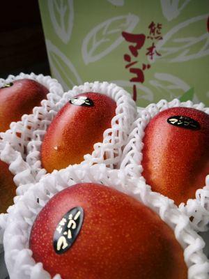 樹上完熟アップルマンゴー やっと完熟しネットに落ち始めました!7月18日(金)~順次出荷していきます!!_a0254656_19511922.jpg