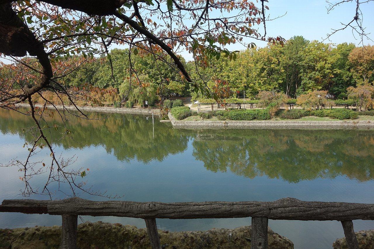 名城公園 名古屋城_c0112559_08212891.jpg