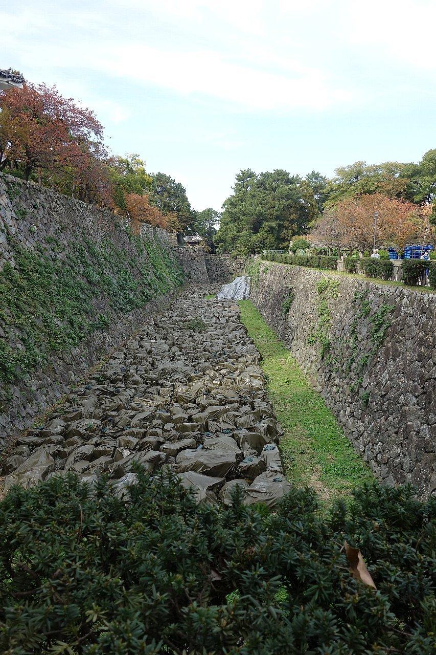名城公園 名古屋城_c0112559_08263723.jpg