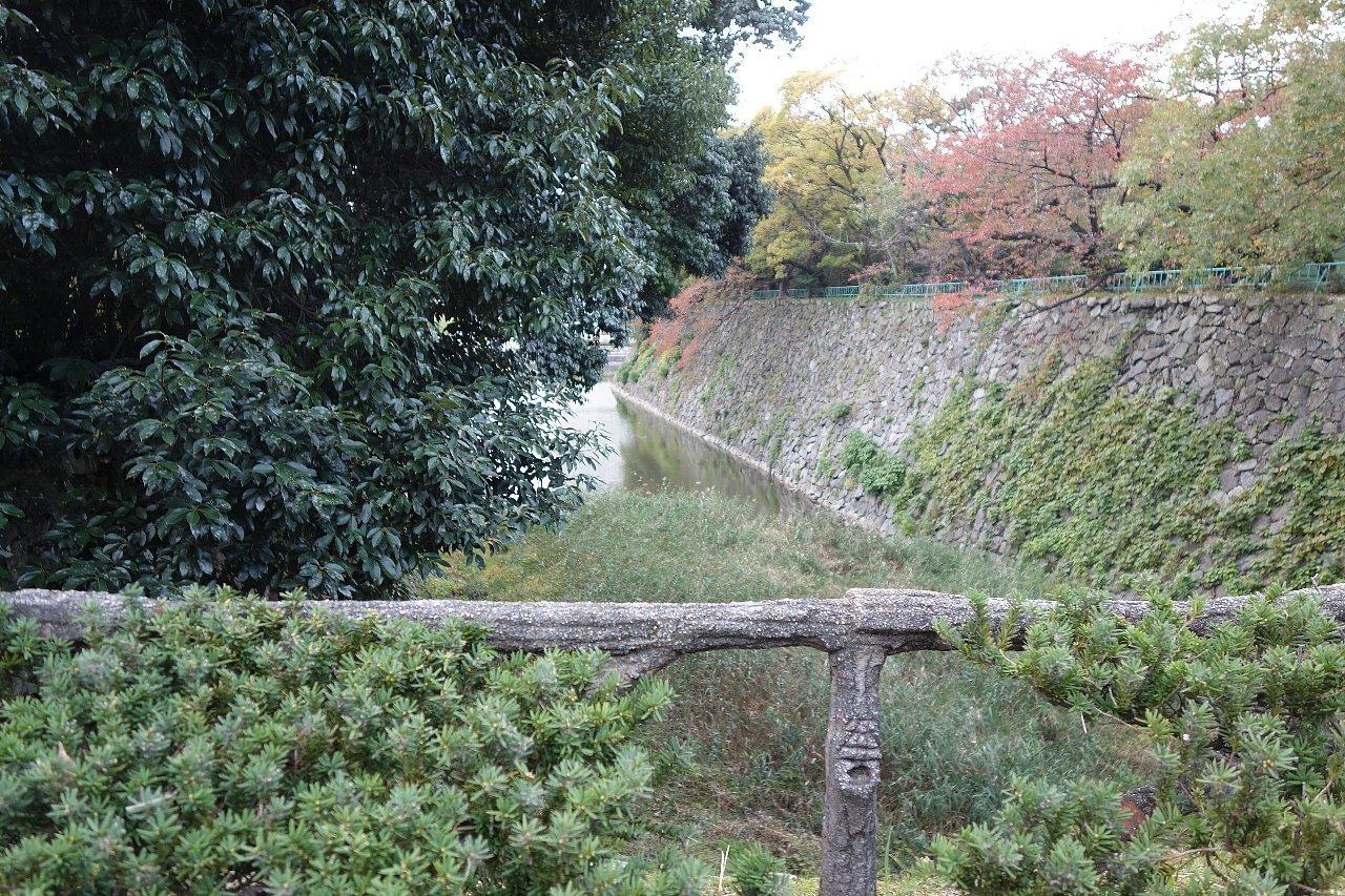 名城公園 名古屋城_c0112559_08284468.jpg