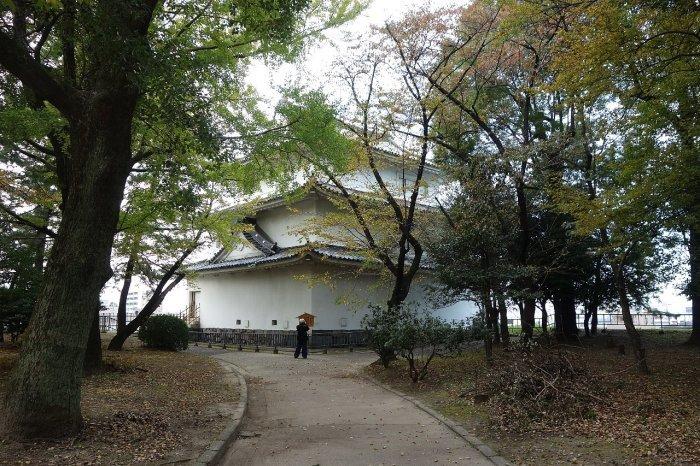 名城公園 名古屋城_c0112559_08494738.jpg