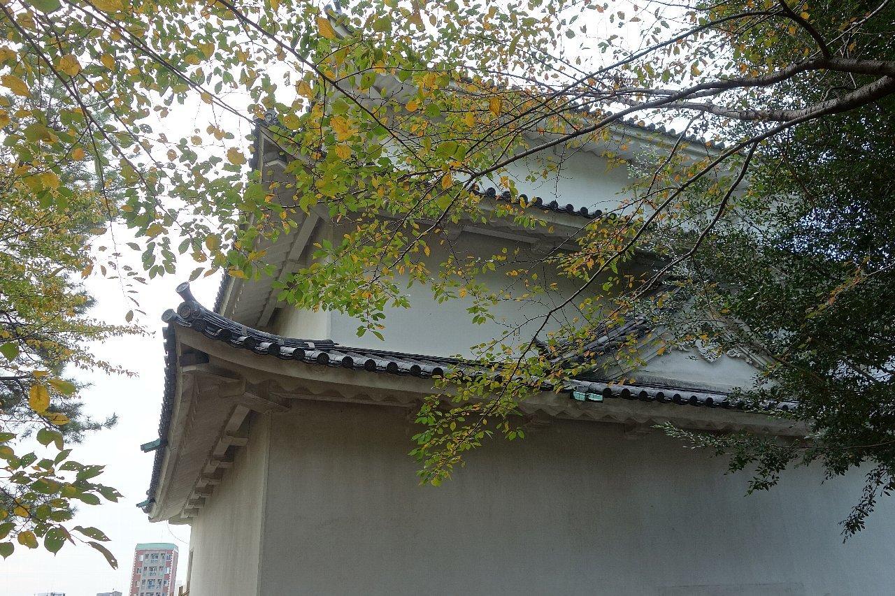 名城公園 名古屋城_c0112559_08522954.jpg