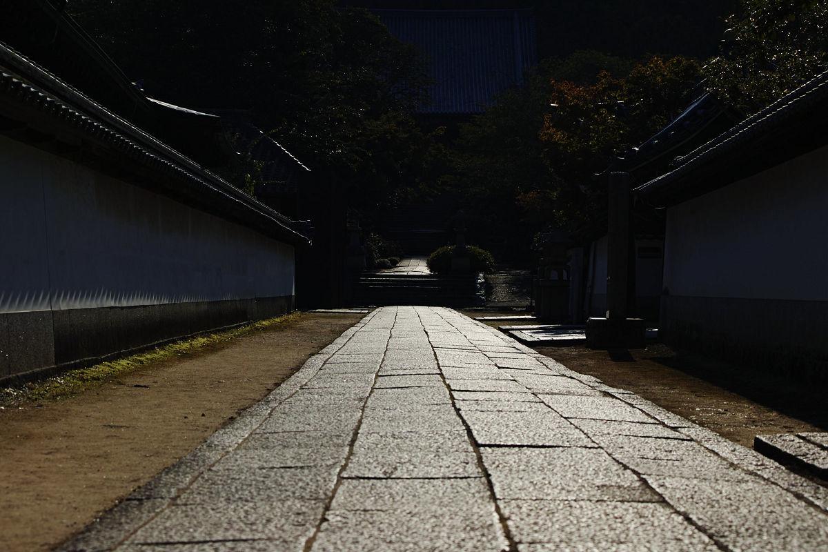 矢田寺_f0021869_21512089.jpg