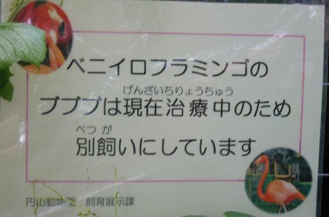 b0014576_17530791.jpg