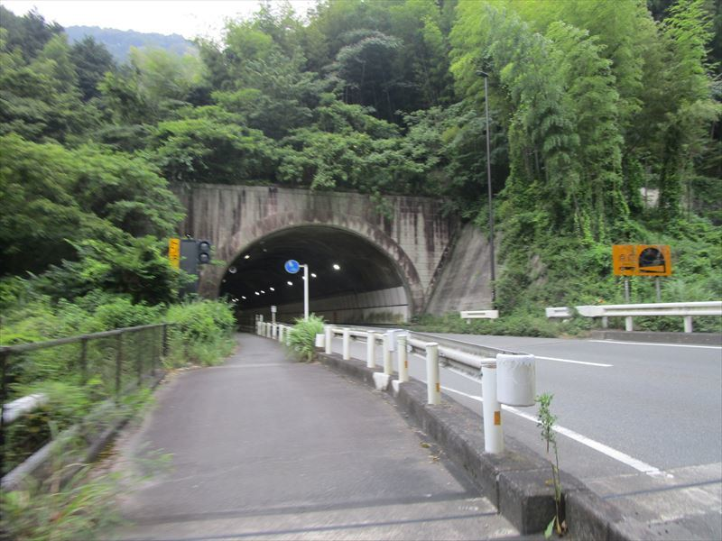 87日目【静岡−豊橋】ちょっと帰郷します_e0201281_20454651.jpg