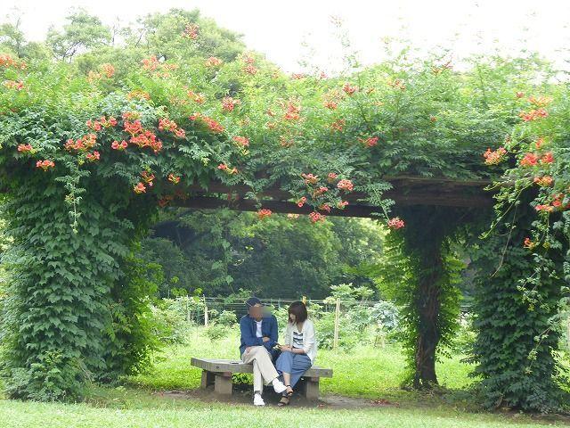 浜離宮はいつ行っても気持ちのいい庭園♪ 花と運河と池と御茶屋と♪_b0287088_16035260.jpg