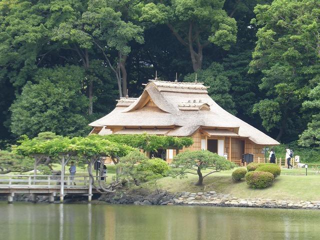 浜離宮はいつ行っても気持ちのいい庭園♪ 花と運河と池と御茶屋と♪_b0287088_16143487.jpg