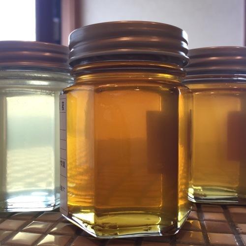 貴重な蜂蜜 岩木山養蜂さんから少量の入荷です_a0134394_05351676.jpeg