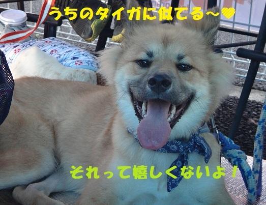 f0121712_17075607.jpg