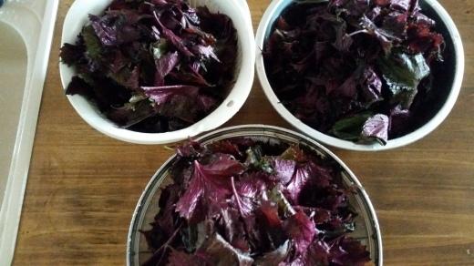 紫蘇ジュース作り&ゆかり作り_f0208315_10283155.jpg