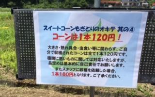 コーンイベント2019(告知 その2)_f0071456_8592797.jpg