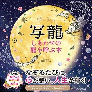 写龍という斬新_b0069918_15574580.jpg