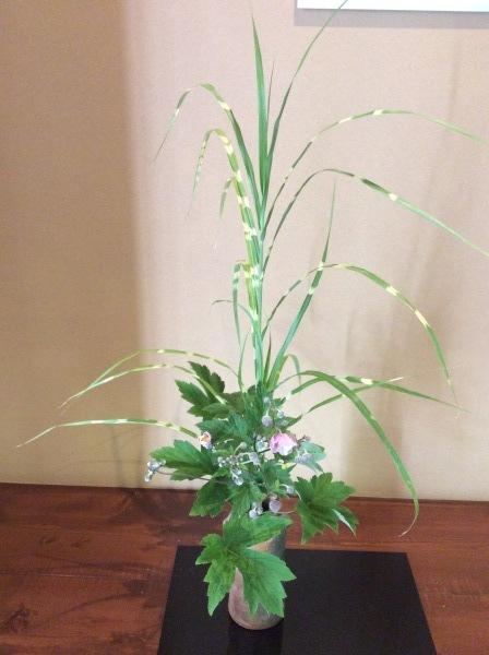 「芭蕉の舘」の草花②_f0289632_16560050.jpg