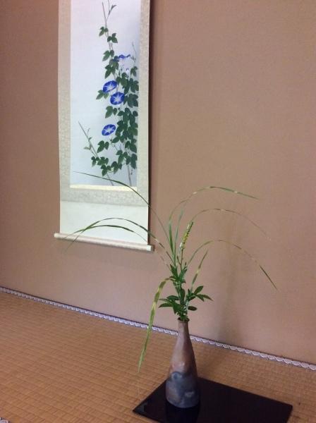 「芭蕉の舘」の草花②_f0289632_16561684.jpg